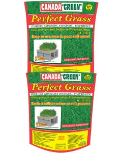 Canada Green Perfect Grass 4 Kg